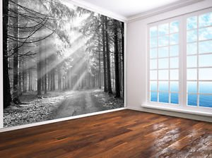 Forest Nature Landscape Photo Wallpaper Wall Mural Black And White - 2XL