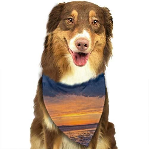 rwwrewre Hundehalsbänder Hunde Halstuch,Sunset at Salt Lake Triangle Bibs Fantasy Fashion Dog Cat Scarf,Soft Head Scarfs Accessories Pet bib Pet Supplies Plaid Salt