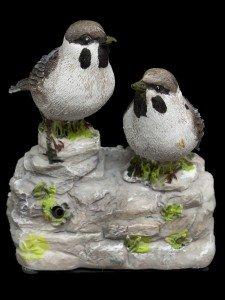 prima-marron-oiseaux-avec-capteur-blanc-343686