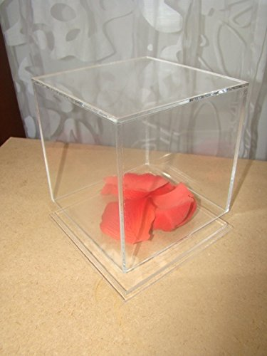 Image of 5 sided Clear Acrylic Perspex Box Cube Display Case with Acrylic Base Lid (200mm x 200mm x 200mm)