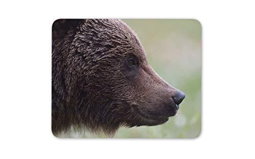 Wilder Braunbär Mousepad Pad - Tier Bär Kanada Dad Son Geschenk-Computer # 14176