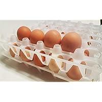 ET12 Eierlagen 12 Stück Eierverpackungen Eierkartons Eierhorden Eierpappen