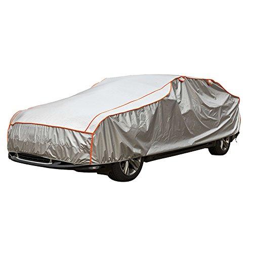 Car Point 1723292 Grattoir /à Glace Plexi 22x10,8cm Grey