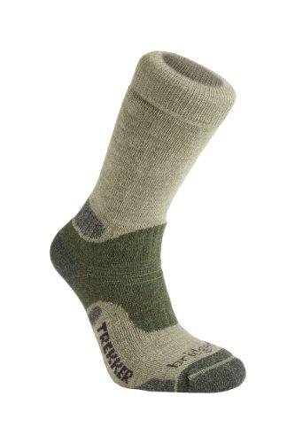 Bridgedale Essential Kit Trekker Herren Socken L  - grün (Trekker Bridgedale Socke)
