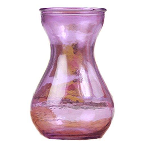 Ruikey boca ancha vidrio jacinto hidroponía florero