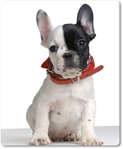 Mauspad / Mouse Pad aus Textil mit Rückseite aus Kautschuk rutschfest für alle Maustypen Motiv: Französische Bulldogge Junghund mit rotem Halstuch [ 17 ] (Französisch-halstuch)