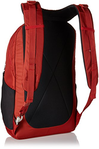 Best Pacsafe Metrosafe LS450 Anti-Theft 25L Backpack, Vintage Red Review