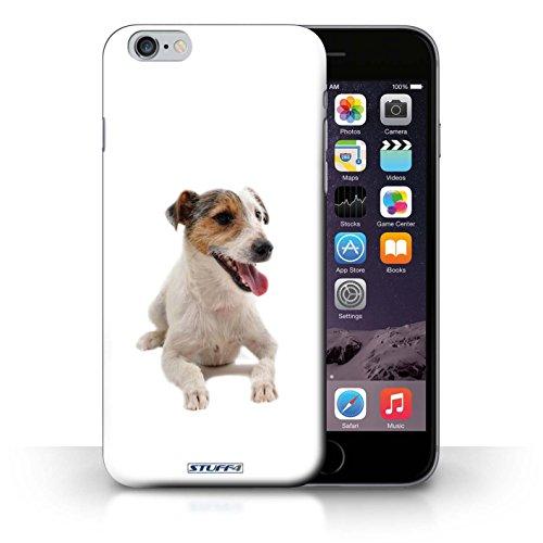 Kobalt® Imprimé Etui / Coque pour iPhone 6+/Plus 5.5 / Dalmatien conception / Série Chiens Jack Russell Terrier