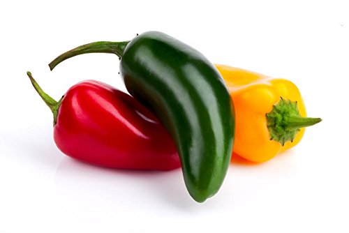 Jalapeno Color Mix Mélange Chili Capsicum annuum Hot Pepper Seeds 25 PCS