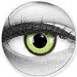 Lenti a contatto colorate Green Lunatic + contenitore di Funnylens, morbide, non corrette, in confezione da due: perfetto per Halloween, Carnevale, o carnevale