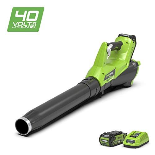 Greenworks 2400807UA - Soplador Inalámbrico
