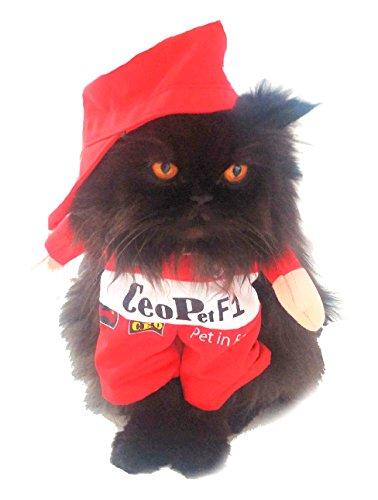 Super süße Hunde Katzen Kleid bis Halloween Funny Kostüm Formel F1Rennwagen ()