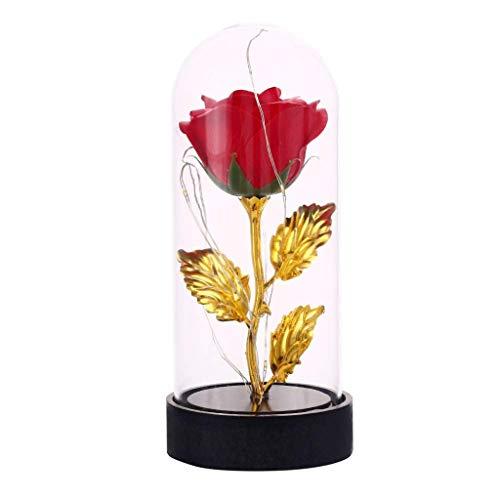 Amycute Ewige Rose Rot, Künstlich Gypsophila Licht Eternal Blume Ewige Rose mit LED-Licht mit Glas Lampenschirm Rose Geschenk zum Valentinstag Jubiläum Geburtstag Hochzeit. (Rote Rose Herzstück)