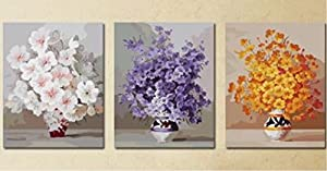 Wowdecor kit dipingere con i numeri per adulti bambini Junior principianti per anziani, pittura numerata, set da 3pezzi–bianco viola fiori gialli 16x 20x P cm Framed