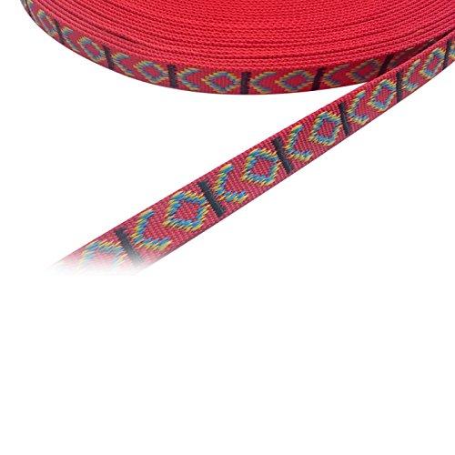 Kacperek Gurtband, Bänder 25mm breit, 10 Meter lang, Dicke 2mm, Polypropylen (Indian Rot) (2 Baumwoll-gurtband)