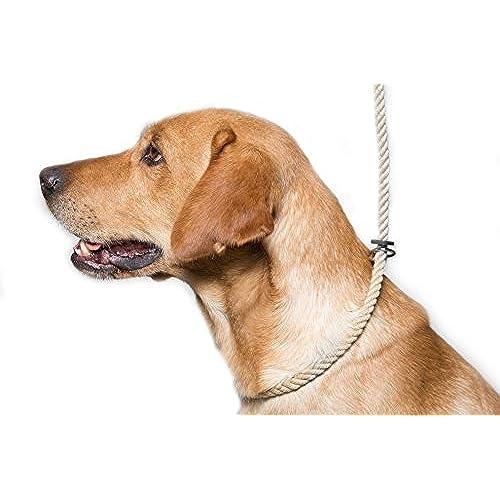 Amazon Uk Dog Training Collar