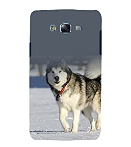printtech Nature Animal Siberian Dog Back Case Cover for Samsung Galaxy J7 (2016 )