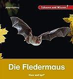 Die Fledermaus: Schauen und Wissen!