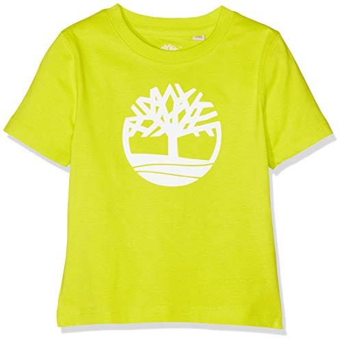 Timberland TEE-SHIRT MANCHES COURTES T-shirt Garçon Bleu (Indigo Blue Beige 85t) 10 ans (Taille fabricant:10A)