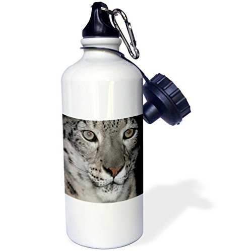 Moson Wasserflasche für Kinder, Mädchen, Jungen, Schneeleoparden-Design, Edelstahl, für Schule, Büro, Reisen, 535 ml