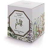 Las semillas orgánicas: Carriere Freres vela perfumada ~ arena (Santum vago)