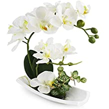 orchidee finte in vaso