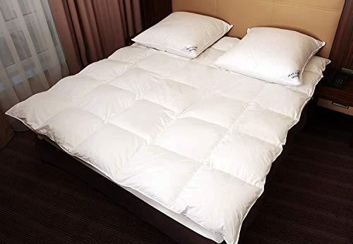 Mayaadi-Home MA49 Warme Daunendecke 200x220cm Daunen 2500 Gr. EXTRA WARM Bettdecke Decke Steppdecke 100 prozentiges Naturprodukt - Bettdecke Gänsedaunen
