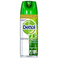 Dettol Disinfectant Surface Spray Morning Dew, 450ml