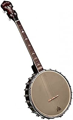 Gold Tone it-250–Banjo tenor irlandés