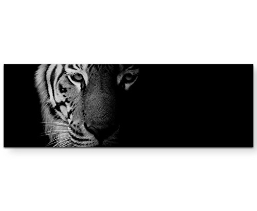 Paul Sinus Art Leinwandbilder | Bilder Leinwand 150x50cm Portrait Tiger Schwarz/weiß
