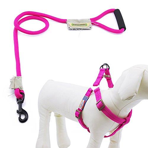 Touchdog Hundeleine mit Halsband und Clip, Hundegeschirr aus Nylon mit bequemem geschäumtem Griff, keine Zugkraft, groß, Pink (Hundegeschirr Pink Nylon)