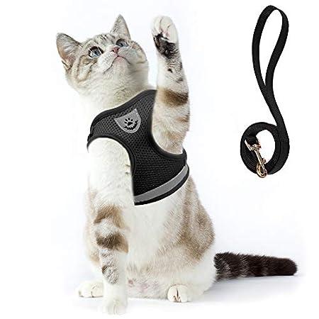Supet Katzengeschirr Geschirr für Katzen Welpengeschirr Weich Kaninchengarnitur Katzen Weste mit Leine für Kitten Hunde…