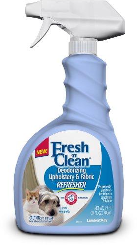 lambert-kay-produkte-dlk63424-fresh-n-clean-deodorizing-polster-und-stoff-refresher