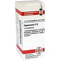 HYPERICUM C 6 10g Globuli PZN:4220922 preisvergleich bei billige-tabletten.eu
