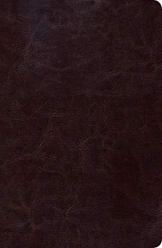Biblia de Estudio Scofield Tomano Personal-Rvr 1960