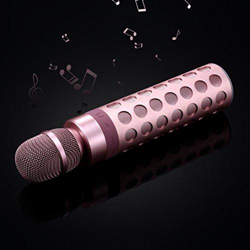 SENDOW laltoparlante Senza Fili Portatile Di Bluetooth Del Microfono Del Karaoke Per Il Android Del Android Di Apple IPhone o Il PC, La Casa Del Partito Allaperto Di KTV Che Gioca Cantare (Oro Rosa) Oro Rosa