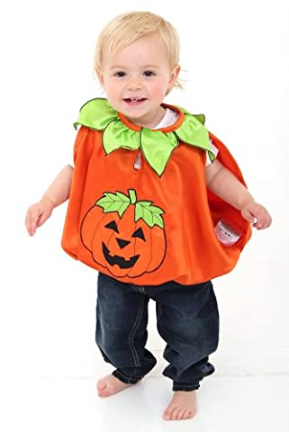Baby/Toddler Orange Pumpkin Halloween Fancy Dress Costume (12-24 months) Slimy Toad