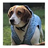 #5: Wagging Fashion Stylish Blue Sleeveless Hoodie For Dogs (8)