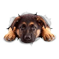 Winston & Bear 3D Dog Stickers - 2 Pack - Resting German Shepherd For Wall, Fridge, Toilet And More German Shepherd Stickers