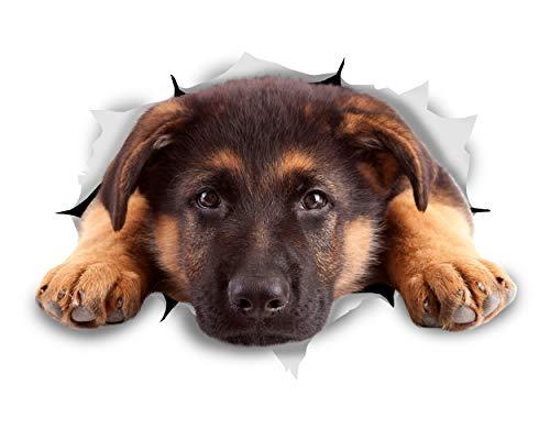Winston & Bear Pegatinas 3D perro - Pack 2 - descanso a pastor alemán para pared, pegatinas de pastor alemán de nevera