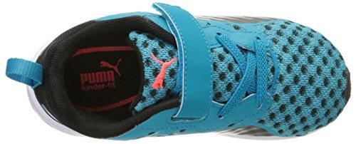 Puma Flare V Kids Textile Turnschuhe Atomic Blue-Black-Black