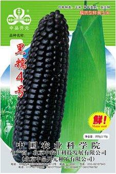 1 original Pack, Graines 200g / Pack, Noir glutineux maïs NO.4 maïs Graines, Heirloom NON-ogm Corn Tasty Organic