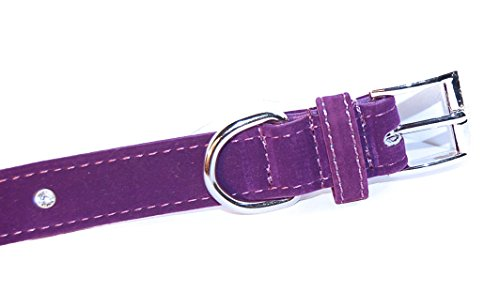 """Pet Palace® """"Plush Pup"""" Suede Luxury Dog Puppy Collar for Dogs of Distinction PLUS FREE LED FLASHING COLLAR TAG! (Purple, Extra Small) 3"""