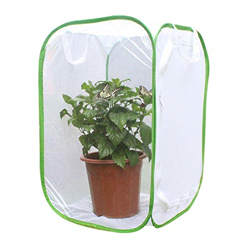 Vousmevoy Foldable Insect Butterfly Habitat, Giant Collapsible Insect Mesh Cage Terrarium Pop-up Cage Seedling Plant Light Transmission Net Tent Greenhouse (Mosquito Netting Panels)