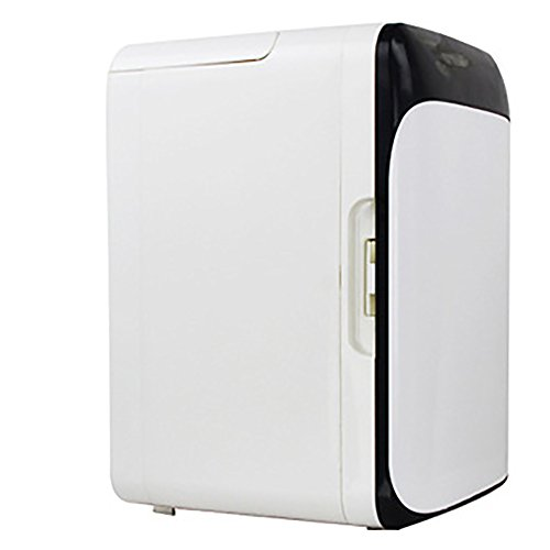 GHL Auto Kühlschrank Mini Haushalt Kühlschrank 10L Kühlbox Passend für Familie, Büro und Auto (Schwarz)