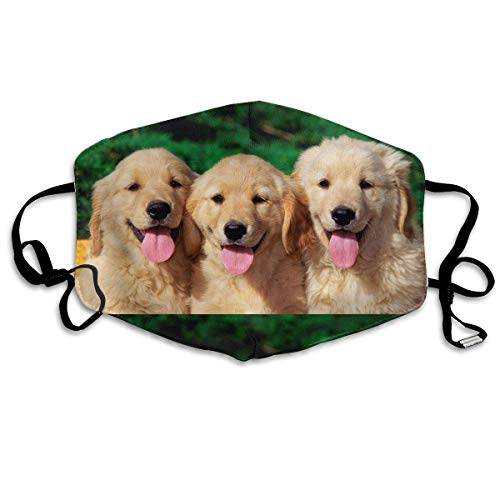 Erwachsene, Mask Face, Mouth Mask, Breathable Mask Anti Dust, Unisex Golden Retriever with Smiling Face Printed Cotton Mouth-Masks Face Mask Polyester Anti-dust Masks ()