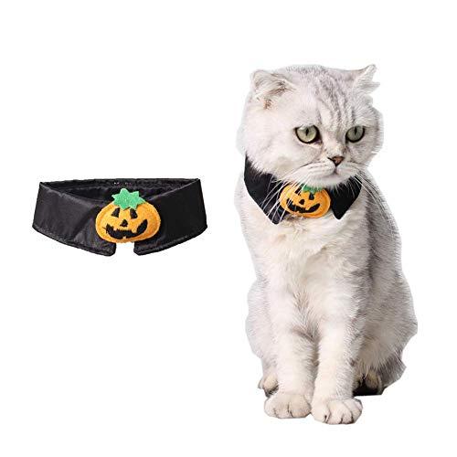 HXINFU Halloween Hundehalsband Kürbis Katze Halsband Halloween Kostüm Fliege klein (Bichon Halloween Kostüme)