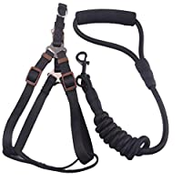 Moraphee Dog Vest Leading Harness with Pulling Rope and Soft EVA Handle Preventing Hands from Riotous Force, Black Size S