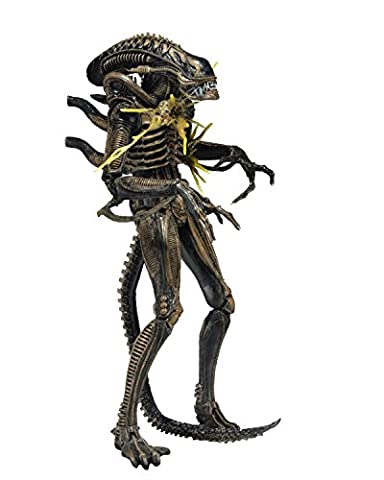 Battle Damaged Alien Warrior Brown (Aliens Series 12) Action Figure [Import Anglais]