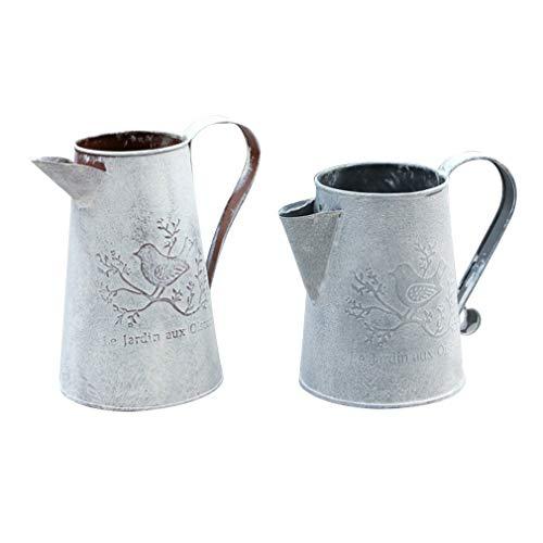 2 Pezzi Vaso da Giardino in Ferro Vintage in Metallo, Decorazione per innaffiatura di Fiori da Giardino, Uno Alto e Uno Corto
